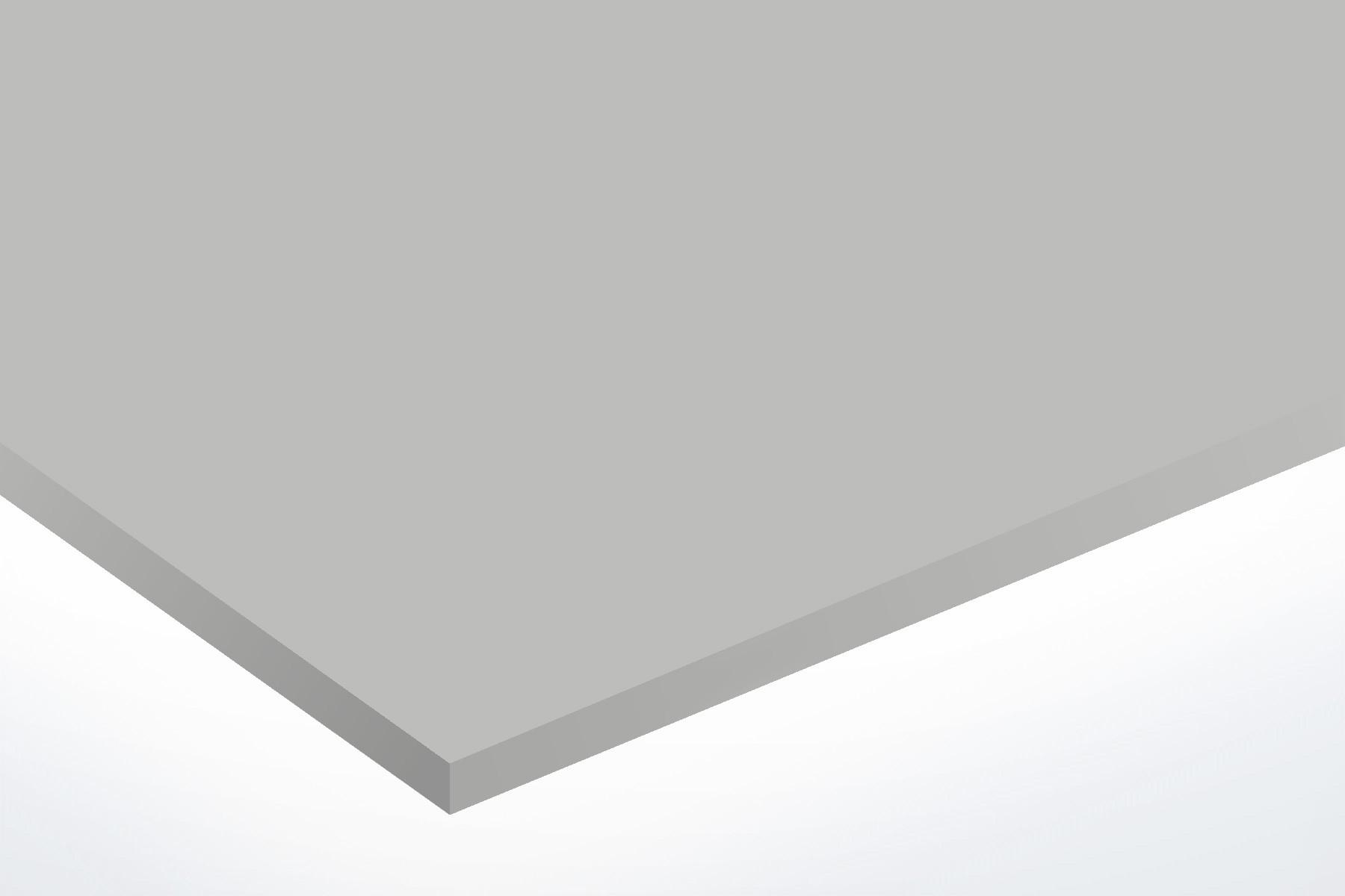 TroLase ADA Signage, Silver, 1ply, 0.8 mm